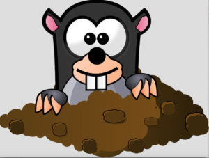 A cartoon mole burrowing